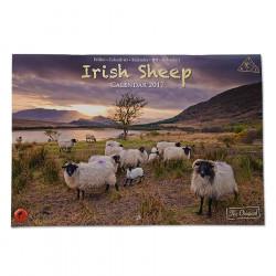 Calendrier 2017 Moutons Irlandais