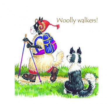 Woolly Walkers Coaster